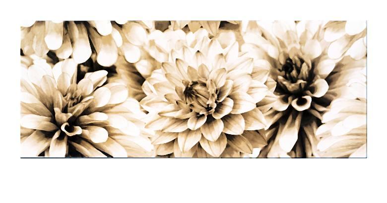 BUGI CREAM INSERTO FLOWER 20x50-002-2014-06-09 _ 15_59_39-72