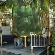 Fotel Bora - Ludwik XV ze szczyptą egzotyki